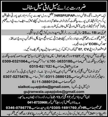 Nrsp National Rural Support Programme Upap Jobs 2020 Latest
