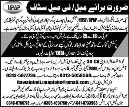 Nrsp Upap National Rural Support Programme Rawalpindi Jobs 2020 Latest