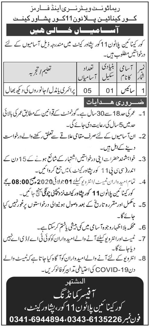 Remount Veterinary & Farms Corps Canal Fulton 11 Core Peshawar Cantt Jobs 2020