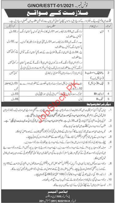 Nurse, Scientific Assistant, Tech, Driver, Cook Jobs In Gilgit 2021