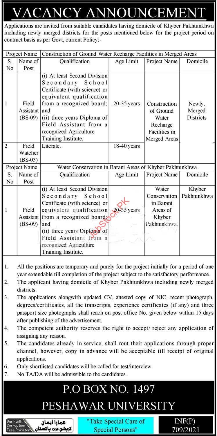 Kpk Govt Jobs February 2021 Public Sector Organization Peshawar