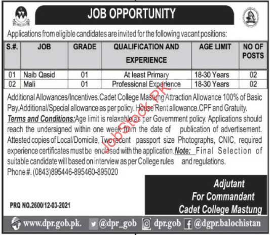 Cadet College Balochistan Jobs Naib Qasid Mali