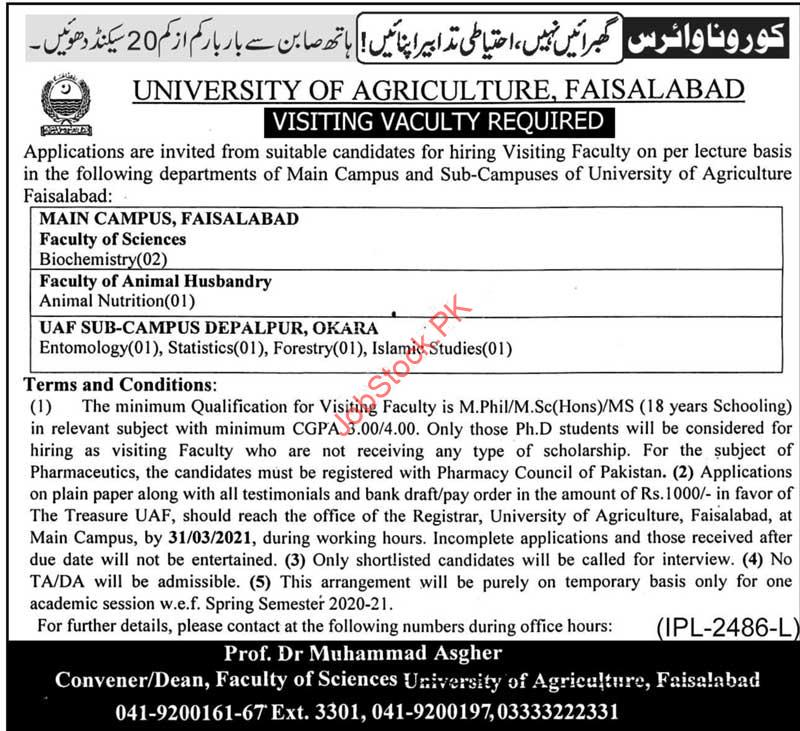 Lecturer Jobs In Agriculture University Faisalabad 2021