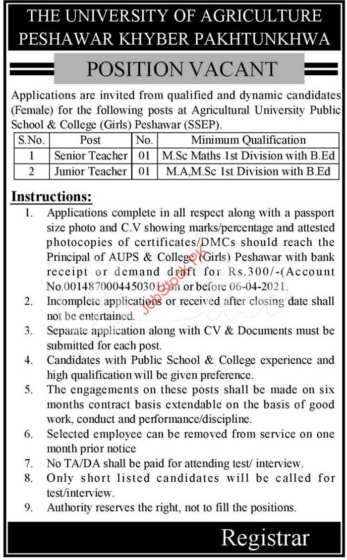 Teaching Jobs In Peshawar 2021 The University Of Agriculture
