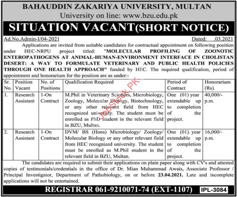 Research Assistant Jobs In Multan