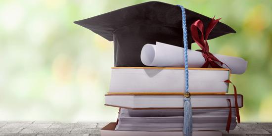 Linko International Scholarship Www.linkointernational.com