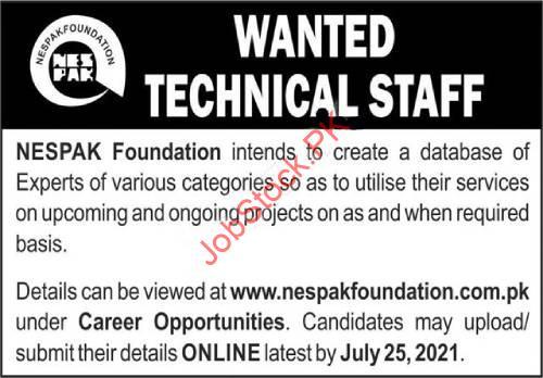Nespak Foundation Jobs 2021 Advertisement