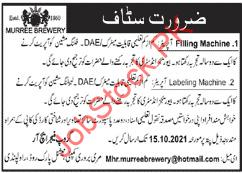 Daily Wages Jobs 2021 Technical Staff